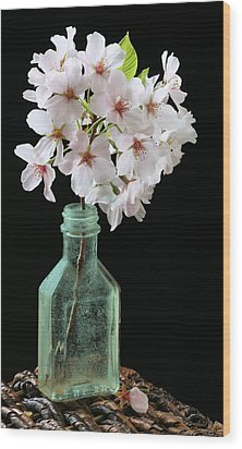 Cherry Green Wood Print by JC Findley