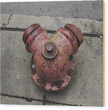 Chicago Hydrant Wood Print by Todd Sherlock