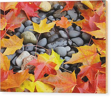 Colorful Autumn Leaves Prints Rocks Wood Print by Baslee Troutman