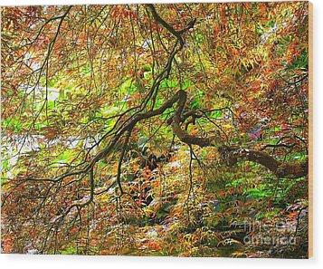 Colorful Maple Leaves Wood Print by Carol Groenen
