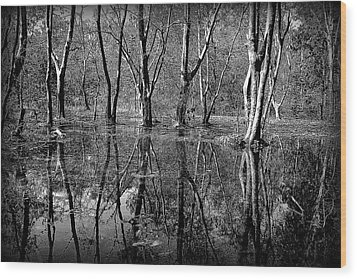 Colorless Serenity Wood Print by Greg Palmer