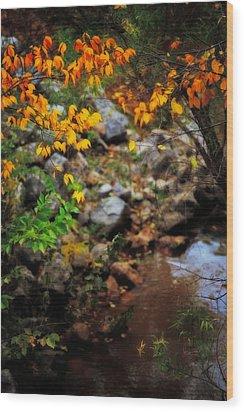 Colors On The Creek Wood Print by Toni Hopper