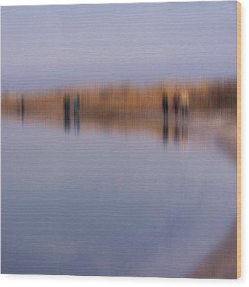 Cupsogue Beach I Wood Print by Bob Retnauer