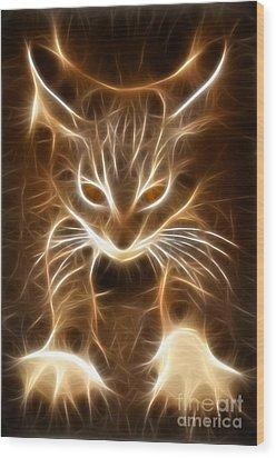 Cute Little Kitten Wood Print by Pamela Johnson