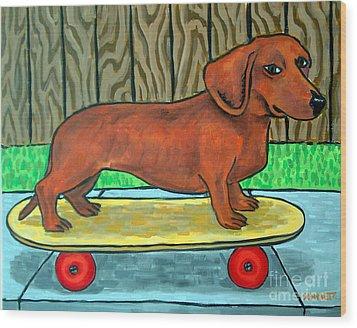 Dachshund Skateboarding Wood Print by Jay  Schmetz