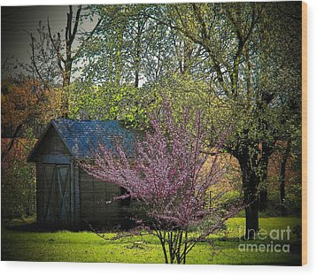 Daddys Old Shed In The Spring Wood Print by Joyce Kimble Smith