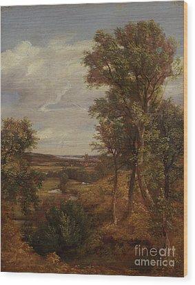 Dedham Vale Wood Print by John Constable