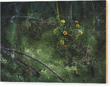 Deep Into Nature Wood Print by Bonnie Bruno