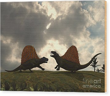 Dimetrodon Fight Over Territory Wood Print by Walter Myers