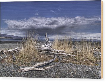 Driftwood By The Sea Wood Print by Michele Cornelius