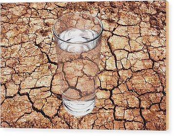 Drought Wood Print by Victor De Schwanberg