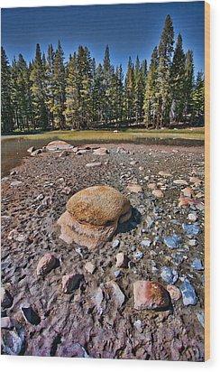 Dry Lake Wood Print by Bonnie Bruno