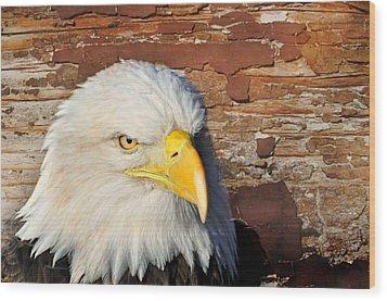 Eagle On Brick Wood Print by Marty Koch