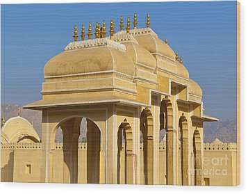 Elaborate Arch Structures In India Wood Print by Inti St. Clair