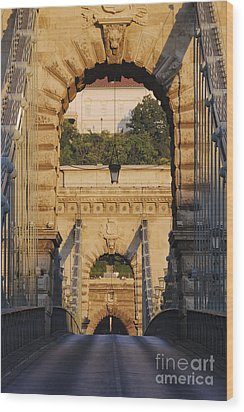 Empty Stone Bridge Wood Print by Jeremy Woodhouse