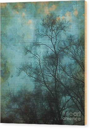 Evening Sky Wood Print by Judi Bagwell