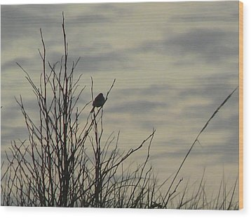 Evening Song Wood Print by Pamela Patch