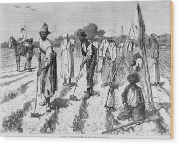 Ex-slaves, Working In A Gang Wood Print by Everett