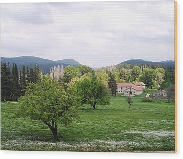 Farmhouses Wood Print by Constantinos Charalampopoulos
