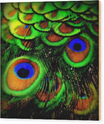 Feathers Wood Print by Karen Wiles