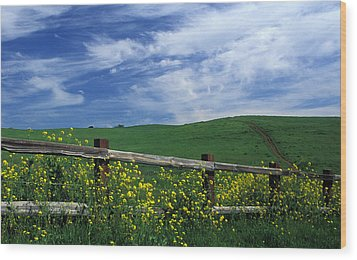 Fence And Flowers Wood Print by Kathy Yates