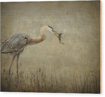 Fishin' Wood Print by Mario Celzner