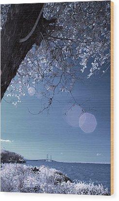 Flaring Sun Wood Print by Rovi Tavare