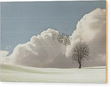 Flock Of Starlings Flying Wood Print by Image by J. Parsons