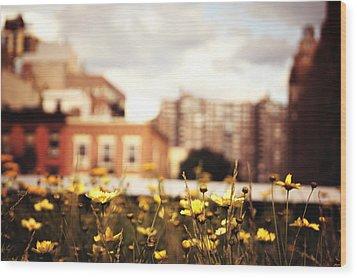 Flowers - High Line Park - New York City Wood Print by Vivienne Gucwa