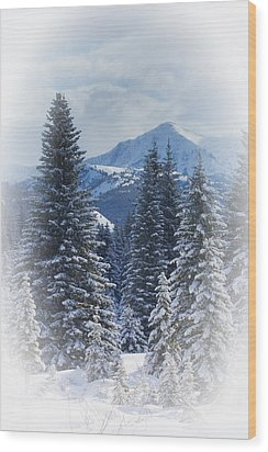 Forest In The Winter Wood Print by Carson Ganci