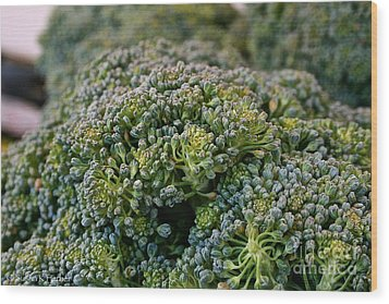 Fresh Broccoli Wood Print by Susan Herber