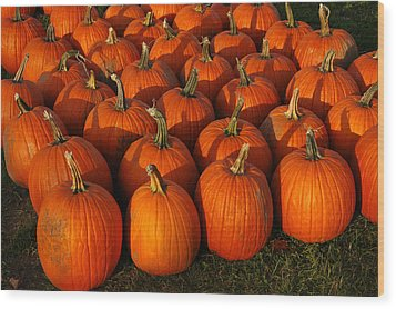 Fresh From The Farm Orange Pumpkins Wood Print by LeeAnn McLaneGoetz McLaneGoetzStudioLLCcom
