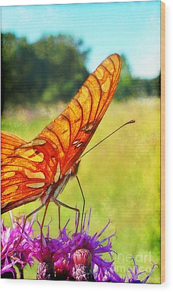 Fritillary On Ironweed Wood Print by Judi Bagwell