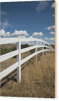 Galloping Fence Wood Print by Peter Tellone