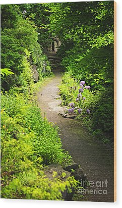 Garden Path Wood Print by Elena Elisseeva