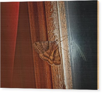 Ghostly Visage Wood Print by Susan Capuano