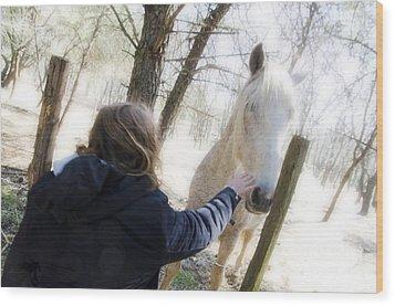 Girl Stroking Camargue Horse At Fence Wood Print by Sami Sarkis