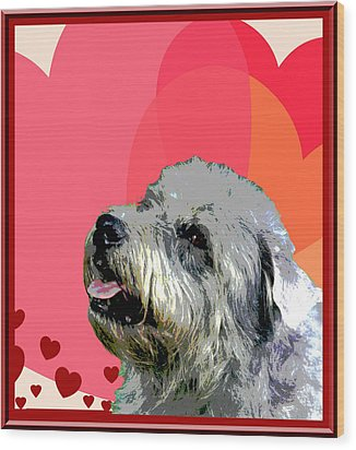 Glen Of Imaal Terrier Wood Print by One Rude Dawg Orcutt