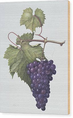 Grapes  Wood Print by Margaret Ann Eden