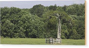 Grave Of Lafayette Meeks Appomattox Virginia Wood Print by Teresa Mucha
