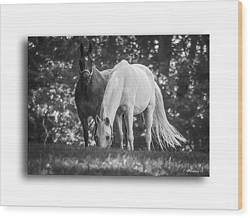Grazing In Black And White Wood Print by Brian Wallace