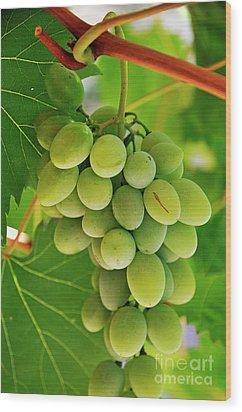 Green Grape And Vine Leaves Wood Print by Sami Sarkis