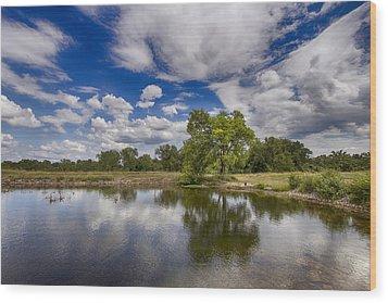 Green Scene At Lake 15 Wood Print by Bill Tiepelman