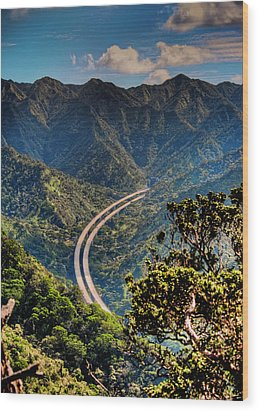H-3 From The Aiea Loop Trail Wood Print by Dan McManus