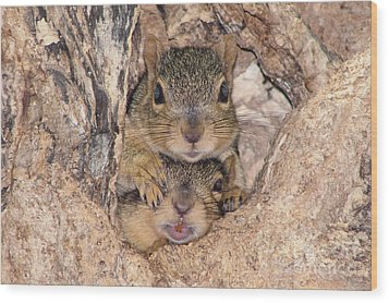 Hey I Cant See Wood Print by Lori Tordsen
