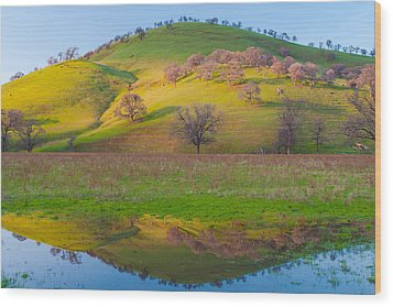 Hill Reflection In Pond Wood Print by Marc Crumpler