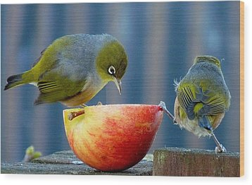 Holding The Apple Up Wood Print by Andrea Lightfoot