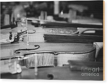 Homemade Handmade Violins Made Of Different Materials And Shape Wood Print by Joe Fox