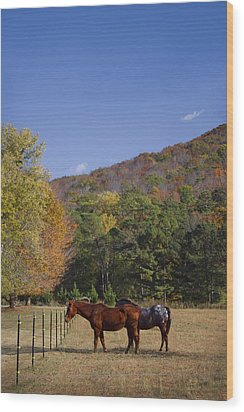 Horses And Autumn Landscape Wood Print by Kathy Clark