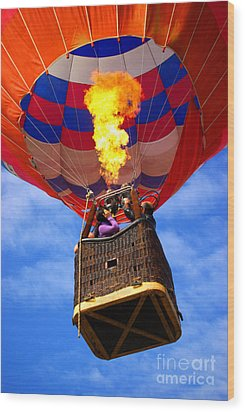 Hot Air Balloon Wood Print by Carlos Caetano